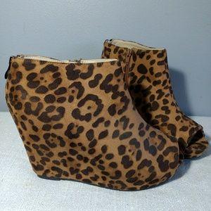 Torrid Leopard Booties